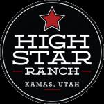 high-star-logo