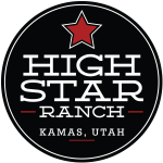 high-star-logo